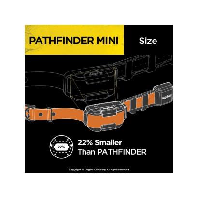 Collier pour petit chien mini dogtra patfinder